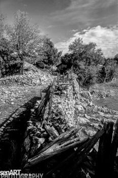 pr2016aaef_19© LEVENT ŞEN