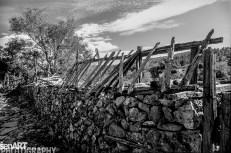 pr2016aaef_20© LEVENT ŞEN