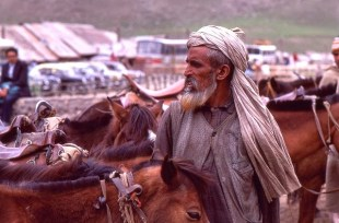 Daily Life in Vale of Kashmir, India, 1982 (18)