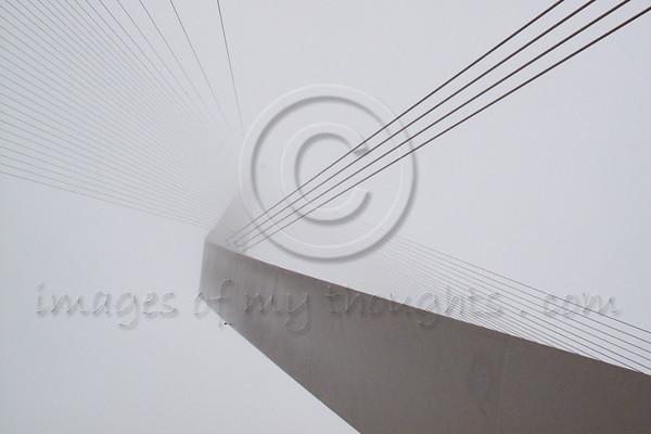 Calatrava Fog