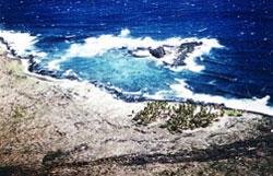 1975-Halape- view of the Halape coast before the 1975 tsunami.