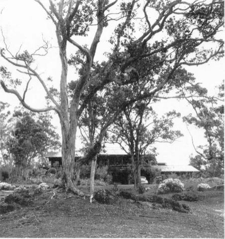 Ainahou Ranch House and Gardens-NPS-1949