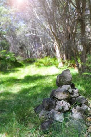 Ainapo_Trail_Marker-DLNR