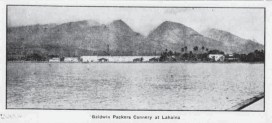 Baldwin_Packers_Cannery-(MauiNews)-1922
