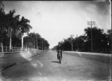 Bicylcist on King Street-PP-38-6-004-1895