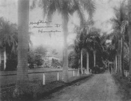 Buena Vista Hospital, Honolulu, late 1898, looking east (US Army Museum)