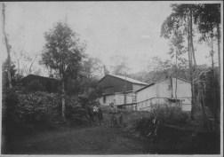 Coffee Mills-Plantations-PP-17-1-007-00001