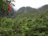 Iliiliula north falls with ohia lehua blossom in foreground, Kauai