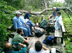 Deck at the end of the boardwalk-TNC-DLNR-2003