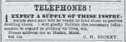 Dickey-advertisement-Hawaiian_Gazette-06-19-1878