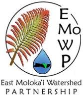 EMoWP