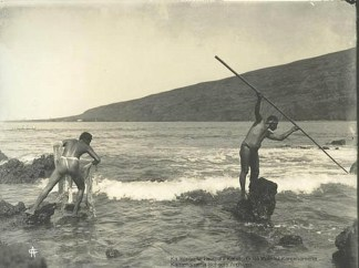 Fishemen-Throw_net-Spear-Kealakekua-1919