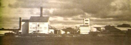 Flintkote_Canec Division Plant - Waiakea-DOH