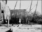 Grass house at Lalani Village, Waikiki-PP-32-4-005
