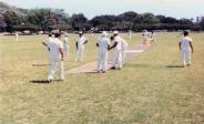 HCC_at_wicket_in_early_1980s-(honolulucricketclub-org)