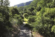 Harold L Lyon_Arboretum-mcbh