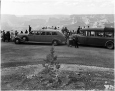 Harvey Cars at Hopi Point, Grand Canyon