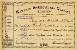 Hawaiian Agricultural Co - stock