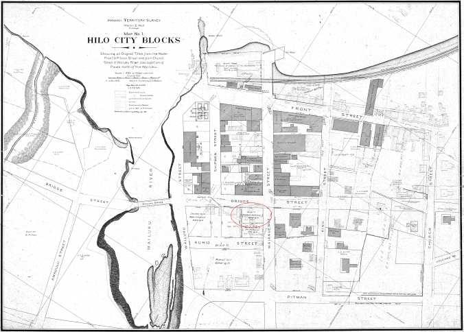 Hilo_City_Blocks-Bldgs-Names-Baldwin-Reg2544-1905