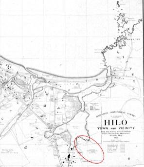 Hilo_and_Vicinity-Baldwin-Reg1561-1891-portion-noting_Hawaiian Cellulose