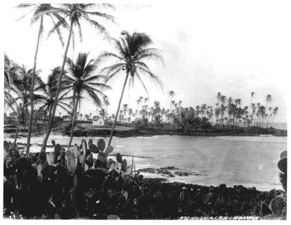Holualoa_Bay-Looking_At_Keolohahihi-1890