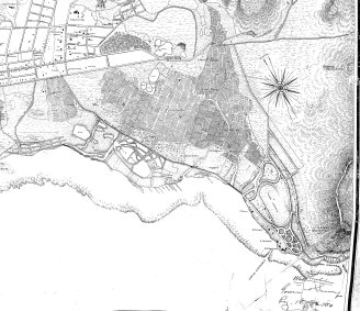 Honolulu_Harbor_to_Diamond_Head-Wall-Reg1690 (1893) - Waikiki_portion-(note_fish_ponds-rice_fields_(formerly_used_as_taro_loi)