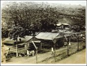 Honouliuli_Camp
