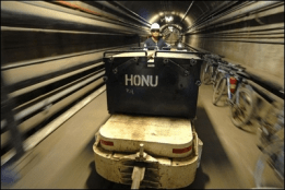 Honu_in_Tunnel-(honoluluadvertiser)