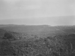 Hoopuloa -- June 21, 1926 (brush in foreground -- lava)-HMCS