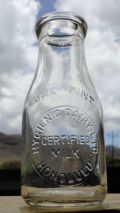Hygienic Dairy Bottle-eBay