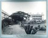 Iolani Palace-Royal_Bungalow