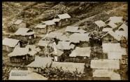 Japanese Village-Wainaku-kinouya
