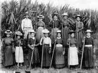 Japanese sugar plantation workers in Hawaii around 1910 (BishopMuseum)