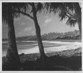 Kaimu Black Sand Beach, Kalapana-PP-29-10-008