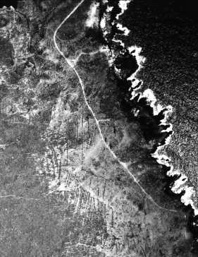 Kalaupapa_Field_System-densely packed windbreak field walls are visible from the air-(McCoy)