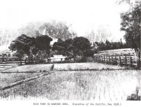 Kaneohe Rice Farm-1938