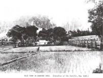 Kaneohe Rice Farm-1938
