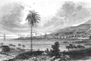 First Whalers in Hawai'i
