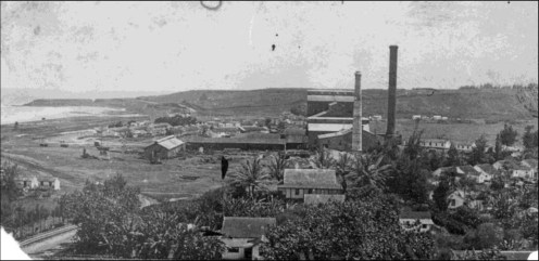 Kealia Mill-KHS, Cultural Surveys
