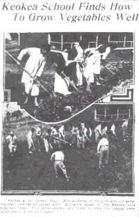 Keokea School Garden - Maui-SB-April_14,_1917