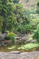 Kepaniwai Park and Heritage Gardens - Gardens