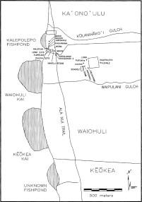 Kihei Coastline-Kalepolepo-Pepalis