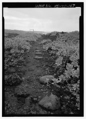 Kings Highway footpath showing rounded rocks laid into lava bed - Hana Belt Road-(LOC)-219755pv