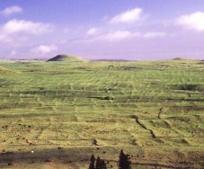 Kohala Field System-photo-Vitousek