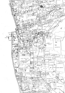 Lahaina_Town-Map-Bishop-Reg1262 (1884)-portion