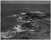 Laupahoehoe-PP-30-2-015-1935
