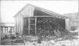 Layan-shed