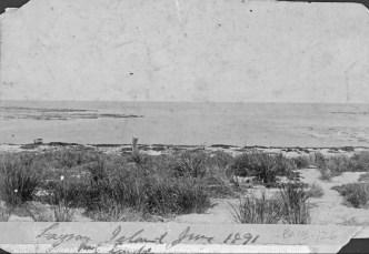 Laysan-Island_Munro-June_1891-(DenverMuseum)