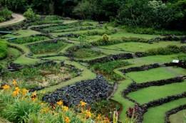 Limahuli_Garden_Kauai