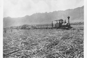 Waimānalo Sugar Plantation